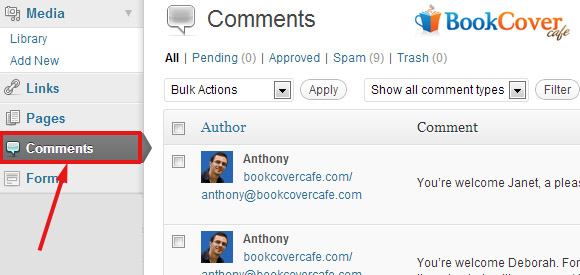 wordpress comment maintenance